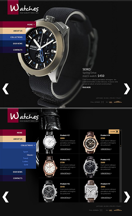 MotoCMS Flash Template #35166