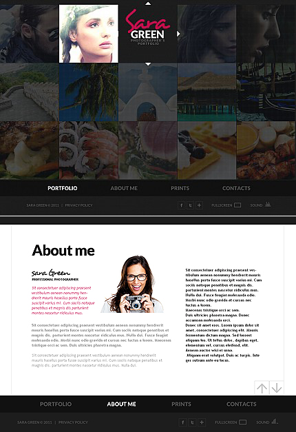 MotoCMS Flash Template #37085