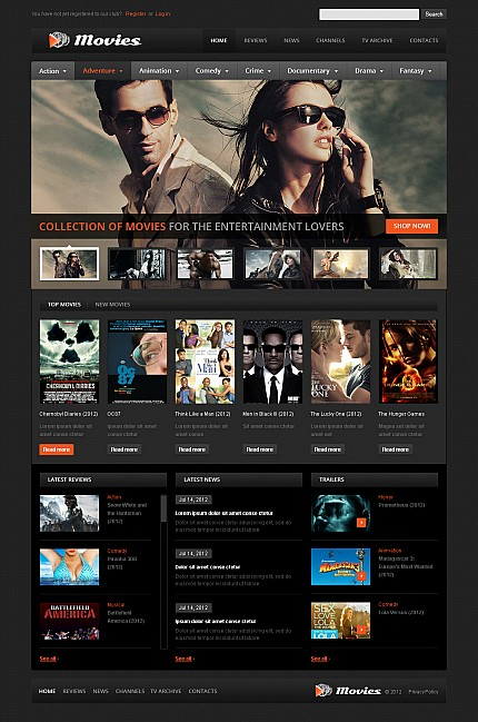 MotoCMS Flash Template #41394