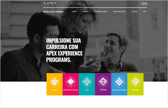 Apex MotoCMS-based Website