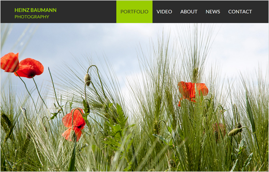 ​Heinz Baumann Photography MotoCMS-based Website